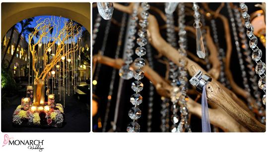 Manzanita-tree-with-crystals-cool-ring-shot